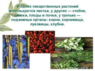У одних лекарственных растений используются листья, у других — стебли, цветки, п