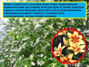 Можно отравиться и летучими веществами, выделяемыми ароматическими растениями. Б