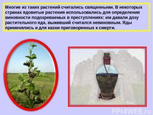 Многие из таких растений считались священными. В некоторых странах ядовитые раст