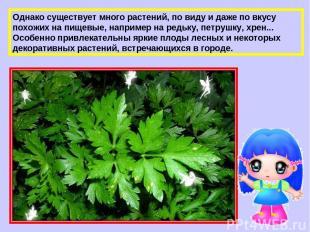 Однако существует много растений, по виду и даже по вкусу похожих на пищевые, на