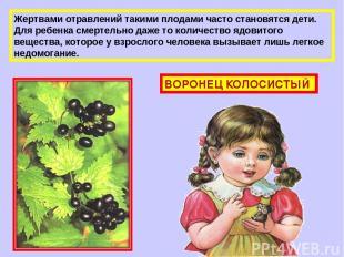 Жертвами отравлений такими плодами часто становятся дети. Для ребенка смертельно