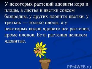 У некоторых растений ядовиты кора и плоды, а листья и цветки совсем безвредны, у
