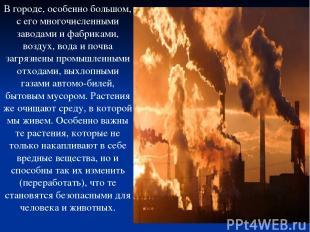 В городе, особенно большом, с его многочисленными заводами и фабриками, воздух,