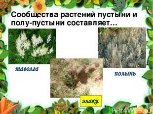 Сообщества растений пустыни и полу-пустыни составляет…