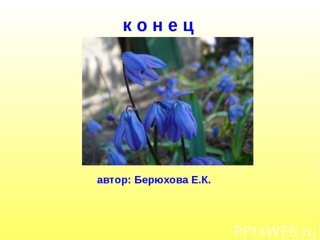 к о н е ц автор: Берюхова Е.К.