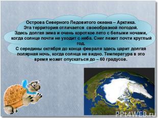 Острова Северного Ледовитого океана – Арктика. Эта территория отличается своеобр