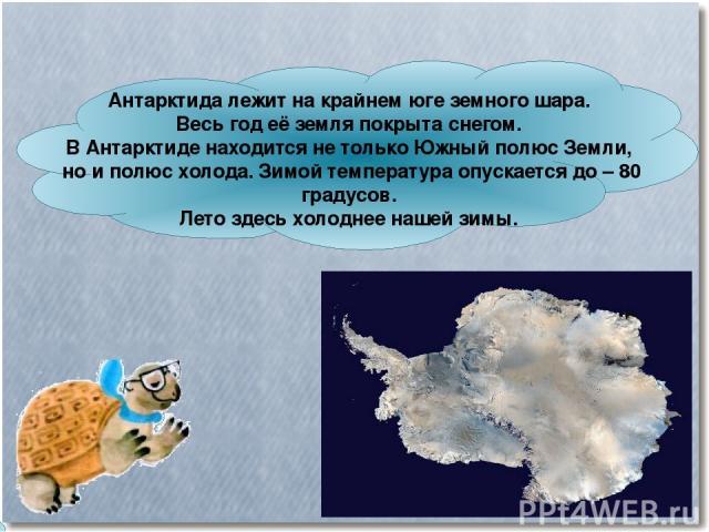 Антарктида лежит на крайнем юге земного шара. Весь год её земля покрыта снегом. В Антарктиде находится не только Южный полюс Земли, но и полюс холода. Зимой температура опускается до – 80 градусов. Лето здесь холоднее нашей зимы.