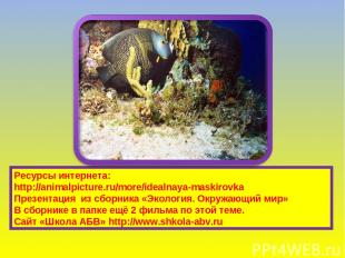Ресурсы интернета: http://animalpicture.ru/more/idealnaya-maskirovka Презентация
