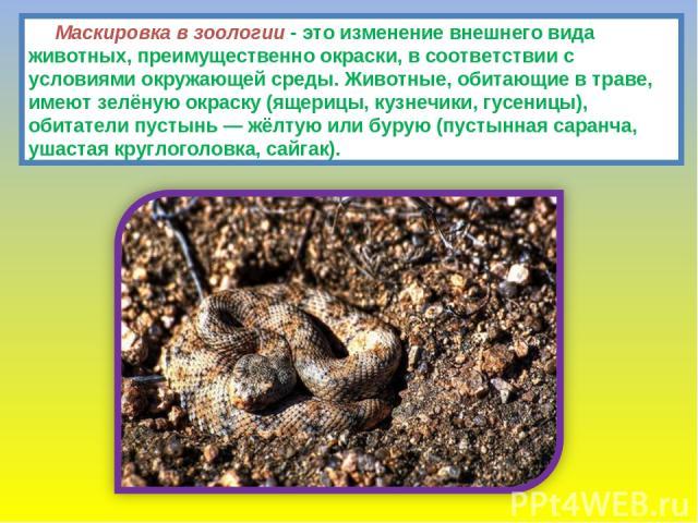 Маскировка в зоологии - это изменение внешнего вида животных, преимущественно окраски, в соответствии с условиями окружающей среды. Животные, обитающие в траве, имеют зелёную окраску (ящерицы, кузнечики, гусеницы), обитатели пустынь — жёлтую или бур…