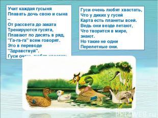 Учит каждая гусыня Плавать дочь свою и сына – От рассвета до заката Тренируются