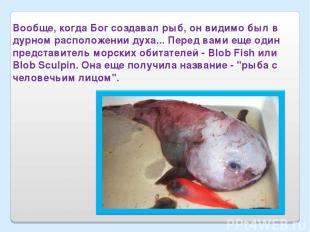 Вообще, когда Бог создавал рыб, он видимо был в дурном расположении духа... Пере