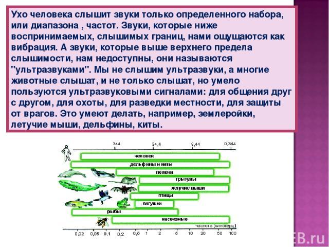 Ухо человека слышит звуки только определенного набора, или диапазона , частот. Звуки, которые ниже воспринимаемых, слышимых границ, нами ощущаются как вибрация. А звуки, которые выше верхнего предела слышимости, нам недоступны, они называются