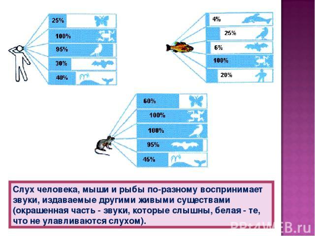 Слух человека, мыши и рыбы по-разному воспринимает звуки, издаваемые другими живыми существами (окрашенная часть - звуки, которые слышны, белая - те, что не улавливаются слухом).