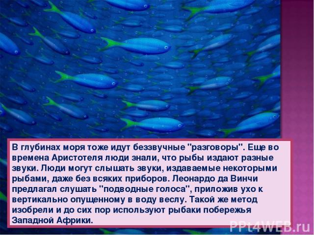 В глубинах моря тоже идут беззвучные