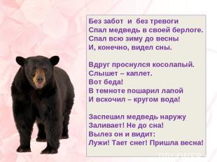 Без забот и без тревоги Спал медведь в своей берлоге. Спал всю зиму до весны И,