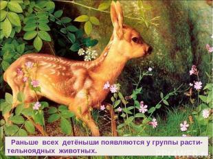 Раньше всех детёныши появляются у группы расти- тельноядных животных.