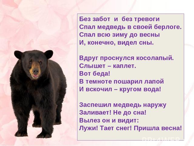 Без забот и без тревоги Спал медведь в своей берлоге. Спал всю зиму до весны И, конечно, видел сны. Вдруг проснулся косолапый. Слышет – каплет. Вот беда! В темноте пошарил лапой И вскочил – кругом вода! Заспешил медведь наружу Заливает! Не до сна! В…
