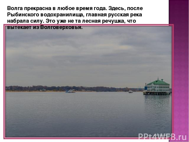 Волга прекрасна в любое время года. Здесь, после Рыбинского водохранилища, главная русская река набрала силу. Это уже не та лесная речушка, что вытекает из Волговерховья.