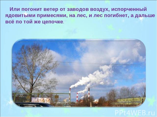 Или погонит ветер от заводов воздух, испорченный ядовитыми примесями, на лес, и лес погибнет, а дальше всё по той же цепочке.