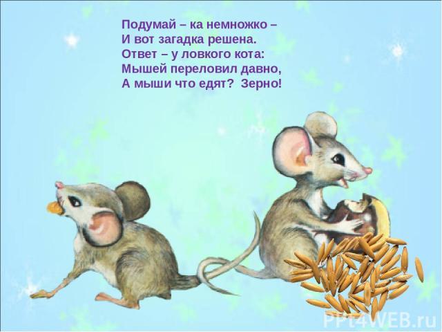 Подумай – ка немножко – И вот загадка решена. Ответ – у ловкого кота: Мышей переловил давно, А мыши что едят? Зерно!