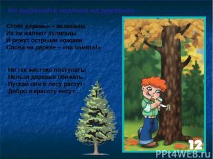 Не вырезайте надписи на деревьях Стоят деревья – великаны Их не жалеют хулиганы