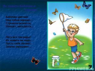 Не ловите бабочек и стрекоз Бабочка цветная Над тобой порхает… Стрекоза резвится
