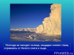 Полгода не заходит солнце, нещадно слепит глаза, отражаясь от белого снега и льд