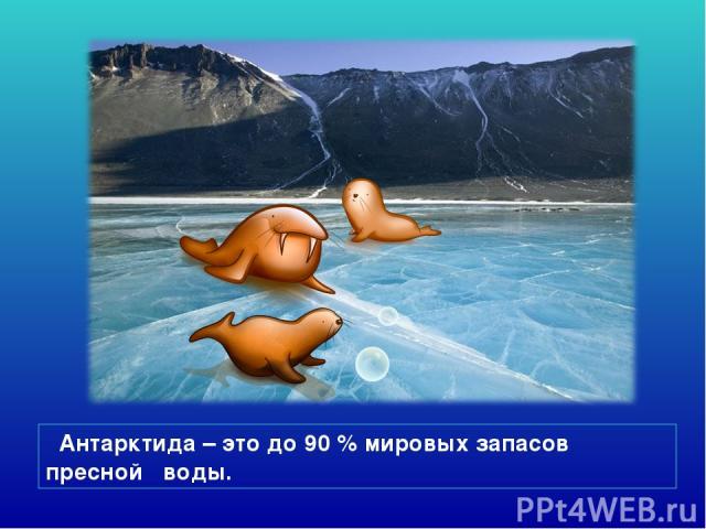 Антарктида – это до 90 % мировых запасов пресной воды.