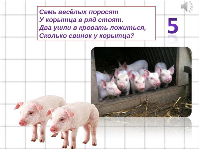Семь весёлых поросят У корытца в ряд стоят. Два ушли в кровать ложиться, Сколько свинок у корытца?
