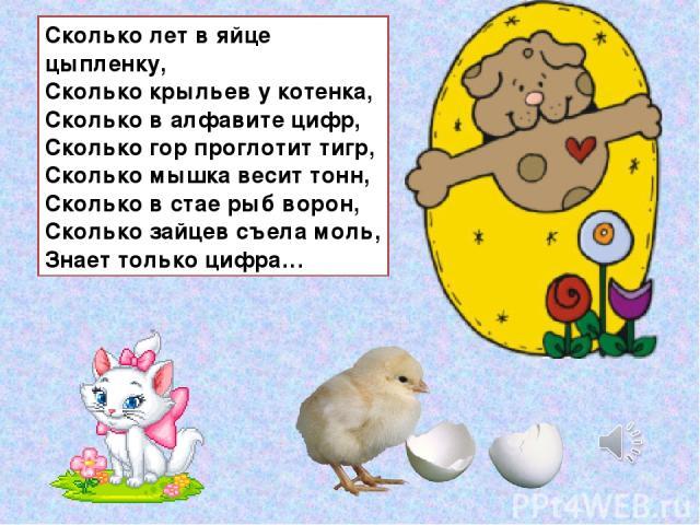 Сколько лет в яйце цыпленку, Сколько крыльев у котенка, Сколько в алфавите цифр, Сколько гор проглотит тигр, Сколько мышка весит тонн, Сколько в стае рыб ворон, Сколько зайцев съела моль, Знает только цифра…