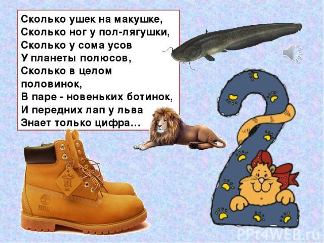 Сколько ушек на макушке, Сколько ног у пол-лягушки, Сколько у сома усов У планеты полюсов, Сколько в целом половинок, В паре - новеньких ботинок, И передних лап у льва Знает только цифра…