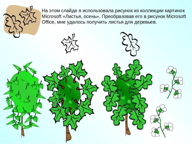 На этом слайде я использовала рисунок из коллекции картинок Microsoft «Листья, осень». Преобразовав его в рисунок Microsoft Office, мне удалось получить листья для деревьев.