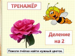 Помоги пчёлке найти нужный цветок.
