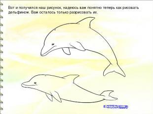Вот и получился наш рисунок, надеюсь вам понятно теперь как рисовать дельфином.