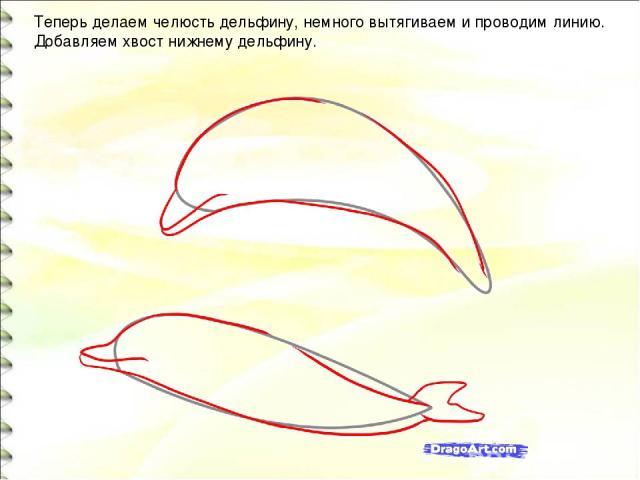 Теперь делаем челюсть дельфину, немного вытягиваем и проводим линию. Добавляем хвост нижнему дельфину.