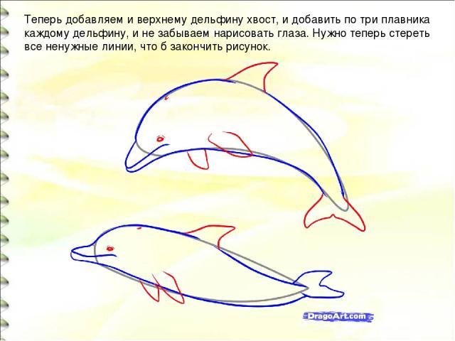 Теперь добавляем и верхнему дельфину хвост, и добавить по три плавника каждому дельфину, и не забываем нарисовать глаза. Нужно теперь стереть все ненужные линии, что б закончить рисунок.