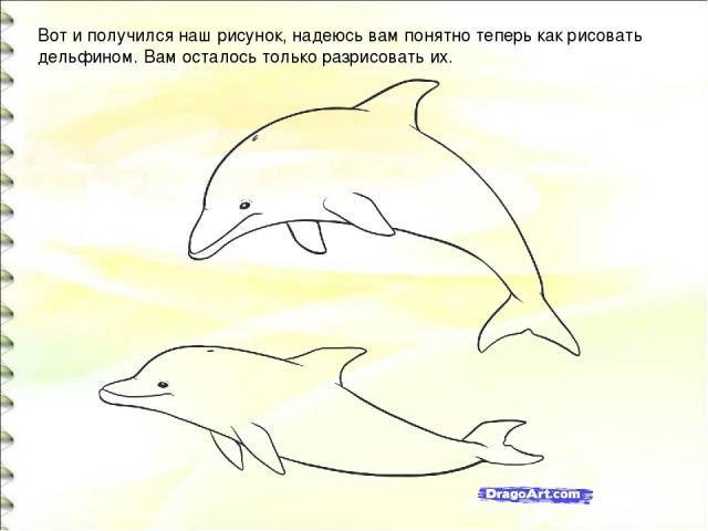 Вот и получился наш рисунок, надеюсь вам понятно теперь как рисовать дельфином. Вам осталось только разрисовать их.
