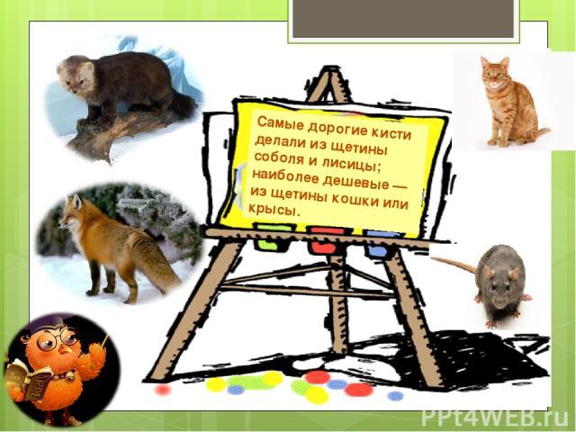 Самые дорогие кисти делали из щетины соболя и лисицы; наиболее дешевые — из щетины кошки или крысы.