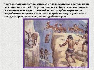 Охота и собирательство занимали очень большое место в жизни первобытных людей. Н