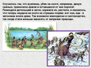Случалось так, что мужчины, убив на охоте, например, дикую свинью, приносили дом