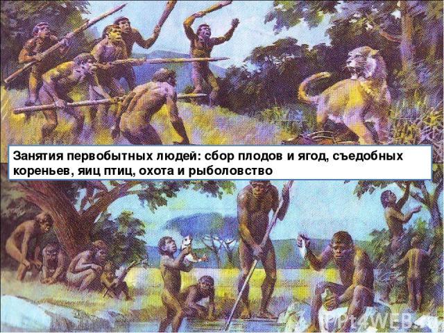 Занятия первобытных людей: сбор плодов и ягод, съедобных кореньев, яиц птиц, охота и рыболовство