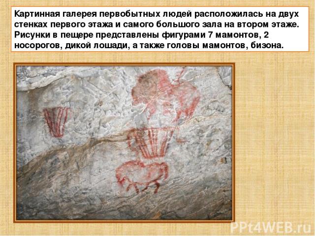 Картинная галерея первобытных людей расположилась на двух стенках первого этажа и самого большого зала на втором этаже. Рисунки в пещере представлены фигурами 7 мамонтов, 2 носорогов, дикой лошади, а также головы мамонтов, бизона.