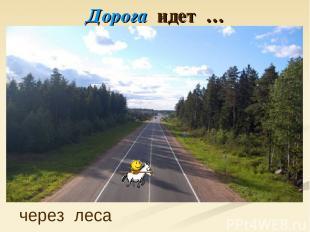 Дорога идет … через леса