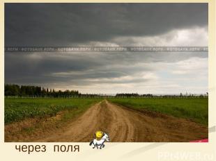 через поля