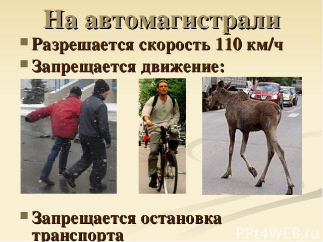 На автомагистрали Разрешается скорость 110 км/ч Запрещается движение: Запрещается остановка транспорта