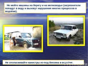 Не мойте машины на берегу и на мелководье (загрязнители попадут в воду и вызовут