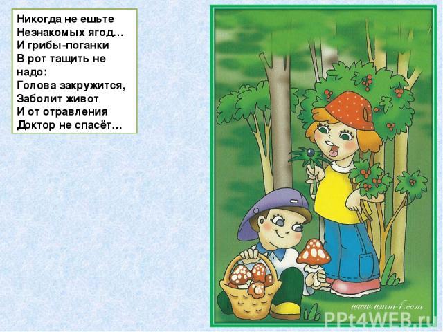 Никогда не ешьте Незнакомых ягод… И грибы-поганки В рот тащить не надо: Голова закружится, Заболит живот И от отравления Доктор не спасёт…