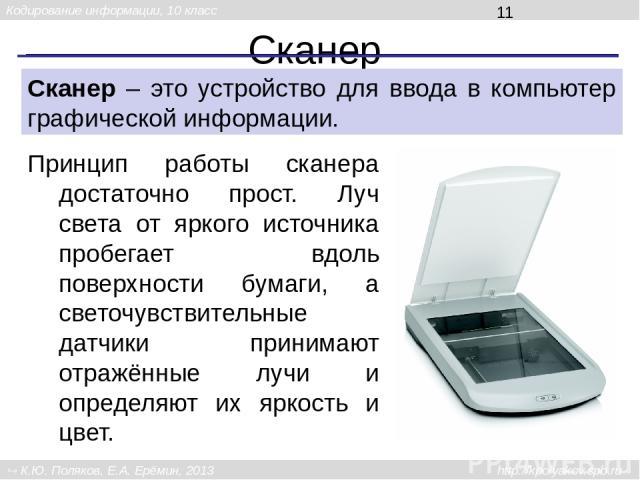 Сканер Сканер – это устройство для ввода в компьютер графической информации. Принцип работы сканера достаточно прост. Луч света от яркого источника пробегает вдоль поверхности бумаги, а светочувствительные датчики принимают отражённые лучи и определ…