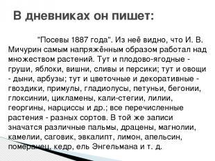 """""""Посевы 1887 года"""". Из неё видно, что И. В. Мичурин самым напряжённым образом ра"""
