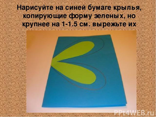 Нарисуйте на синей бумаге крылья, копирующие форму зеленых, но крупнее на 1-1.5 см. вырежьте их